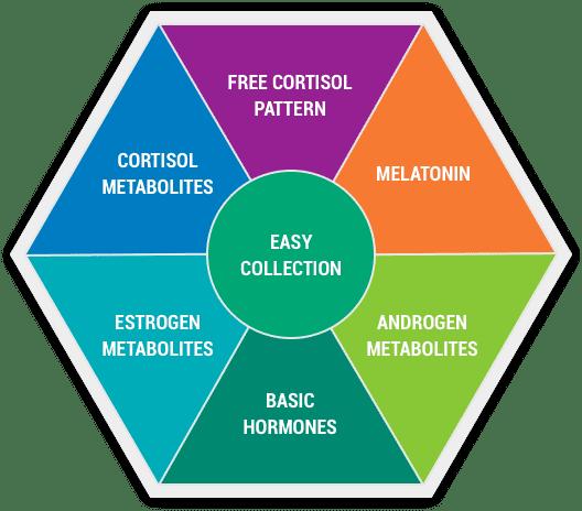 DUTCH test covers melatonin, sex hormones, cortisol,estrogen