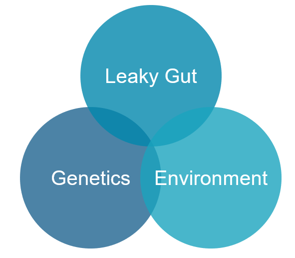 Three causes of autoimmunity: Leaky Gut, Genetics, Environment